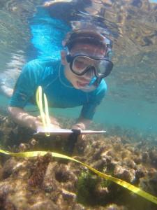 Bénévole Reef Check formation