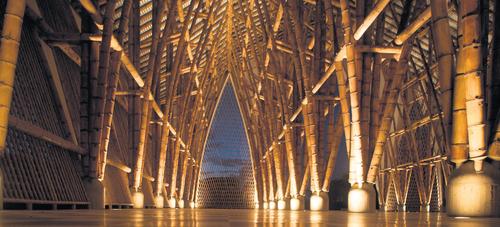 bambou4