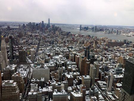 verger new york 6