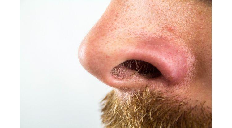 nose-2790325_960_720