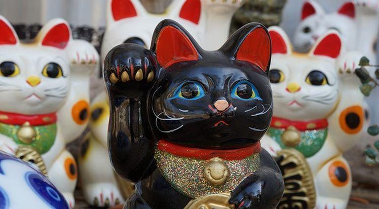 maneki-neko chat porte bonheur